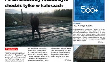 NK15okladka